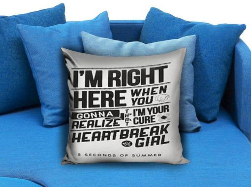 https://cdn.shopify.com/s/files/1/0985/5304/products/Heartbreak_5_SOS_white_Pillow_Case_Pillow_Cover_Printed_18x18_16x24_20x30_Modern_Pillow_Case_Decorative_Throw_Pillow_Case_One_Side_Printing.jpeg?v=1448646314