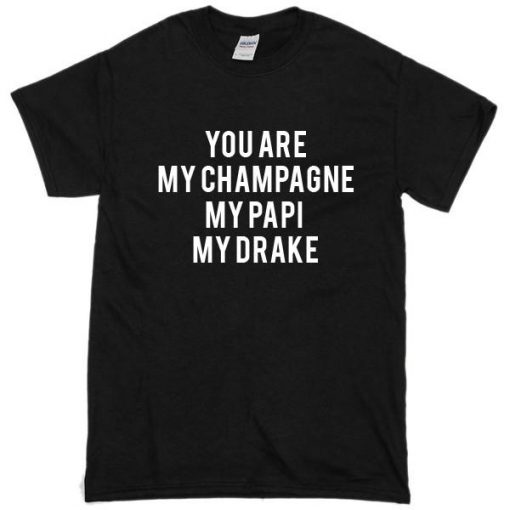 https://cdn.shopify.com/s/files/1/0985/5304/products/You_Are_My_Champagne_My_Papi_My_Drake_Tshirt.jpg?v=1478762444