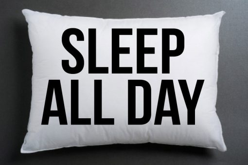 https://cdn.shopify.com/s/files/1/0985/5304/products/sleep_all_day.jpeg?v=1448644810